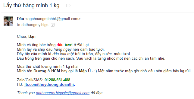 Nội dung email marketing chi tiết