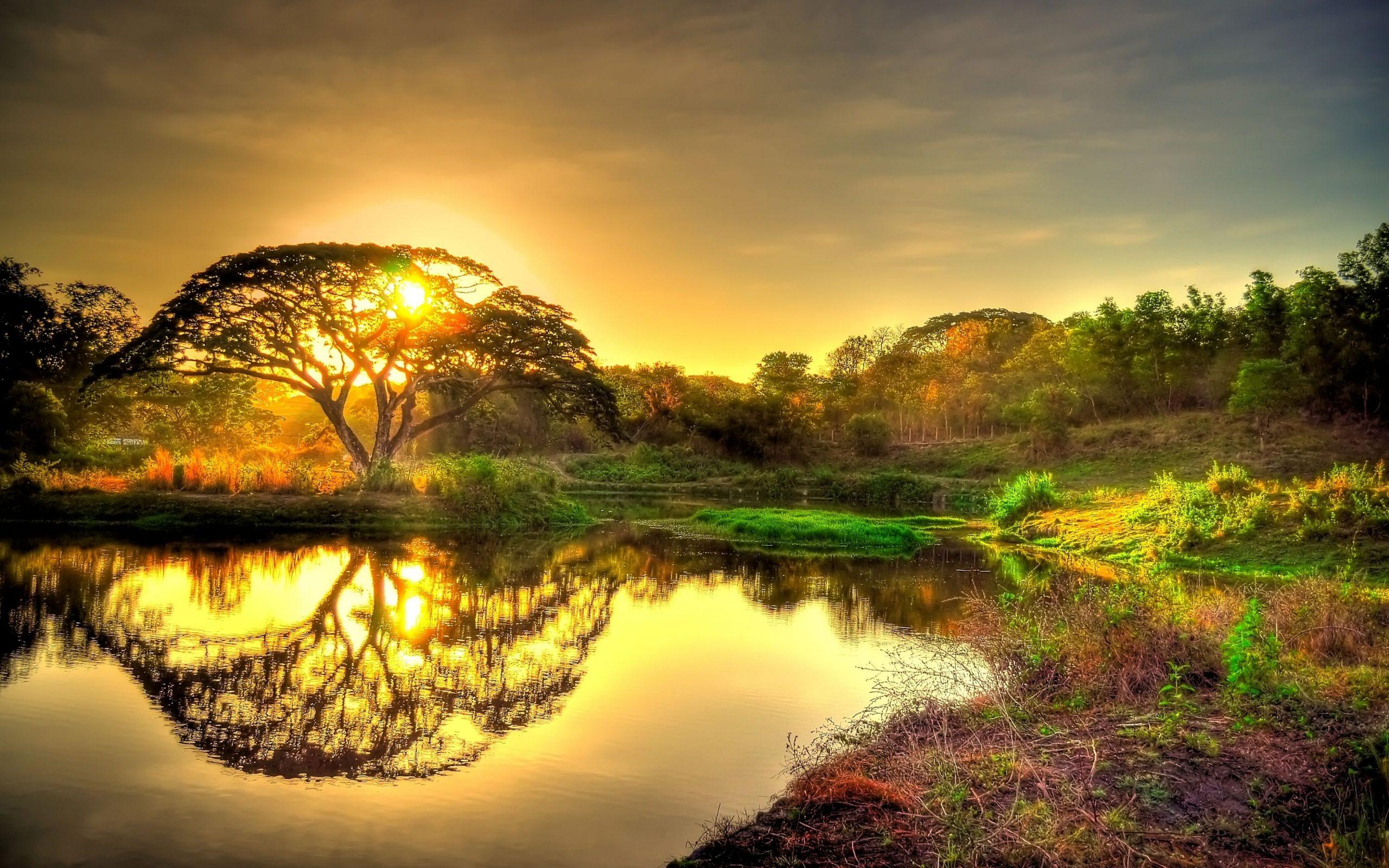Hình nền đẹp 4k - Phong cảnh thiên nhiên làm hình nền đẹp cho máy tính