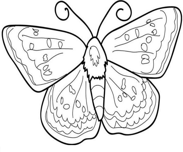 Hình tô màu con bướm