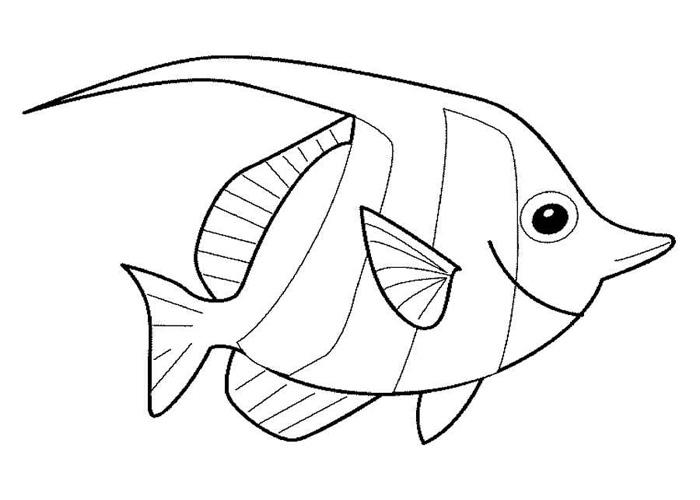 In hình tô màu chú cá cho bé tập tô