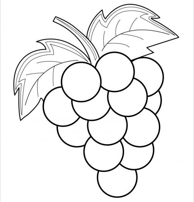 Tranh tô màu cho bé 3 tuổi hình quả nho