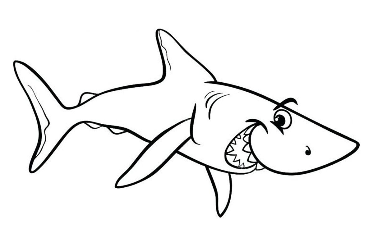 Tranh tô màu chú cá mập