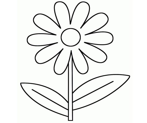 Hướng dẫn tô màu cho bé hình bông hoa
